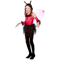 Little-Ladybug