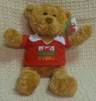 teddy-rugby-shirt